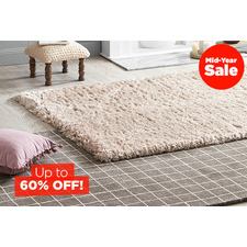Winter Rugs