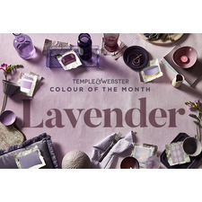 Colour Of The Month - Lavender