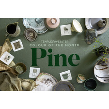 Colour of the month - Pine