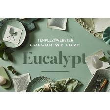 Colour We Love - Eucalypt