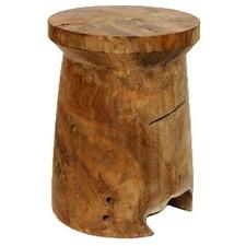 Woody Mushroom Stool