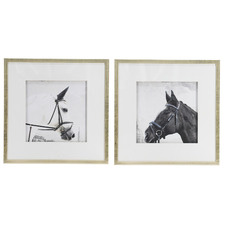 Horse Framed Printed Wall Art Diptych