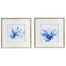 Blue Seaweed Framed Printed Wall Art Diptych