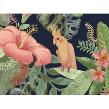 Jungle Bird Artwork