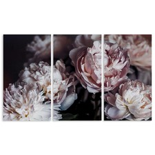 Peonies 3 Piece Canvas Print