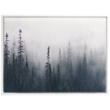 Enveloped Forest Canvas Wall Art