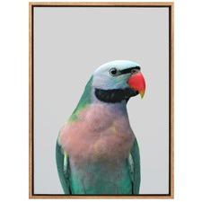 Hello There Bird Canvas Wall Art
