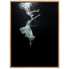Weightless Canvas Wall Art