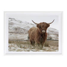 Great Hair Don't Care Yak Printed Wall Art