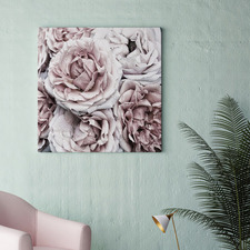 Frosting Blooms Canvas Wall Art