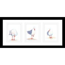 Seagull Watercolour Series Framed Trio Print
