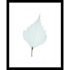 Fragile Leaves VII Framed Print