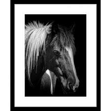 Austin Horses V Framed Print