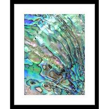 Pacific Paua III Framed Print