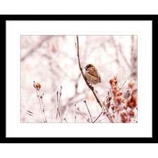 Swallows Song V Framed Print