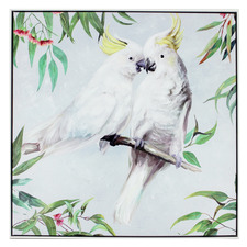 Kissing Cockatoo Framed Canvas Wall Art