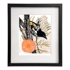 Honeyeater Print by Fiona Roderick