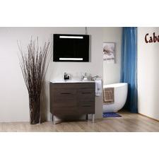 CABA1009