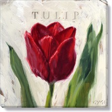 Gygi Tulip Canvas Wall Art