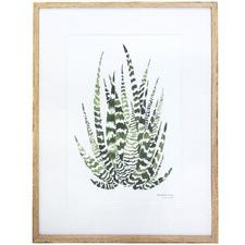 Tamaya Framed Printed Wall Art