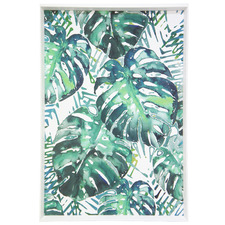 Monstera Framed Printed Wall Art