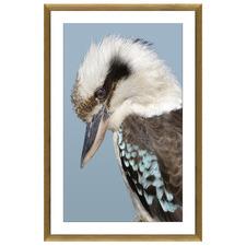 Kookaburra Framed Printed Wall Art