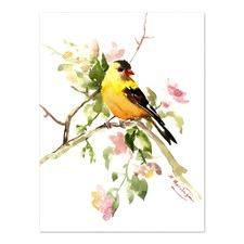 American Goldfinch Songbird Printed Wall Art