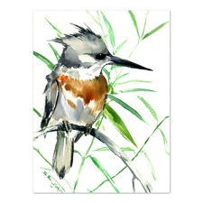 Belted Kingfisher 1 Printed Wall Art
