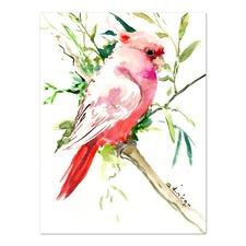 Cockatoo 1 Printed Wall Art