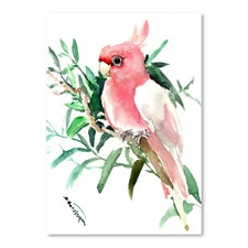 Cockatoo 2 Printed Wall Art