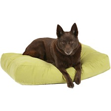 Avocado Metro Shapes Oblong Pet Cushion