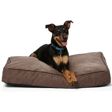 Mocha Shapes Oblong Pet Bed