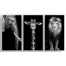 The Finest African Photographic Art Print Triptych (Set of 3)