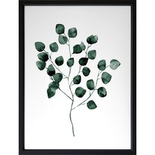 Green Dollar Framed Print