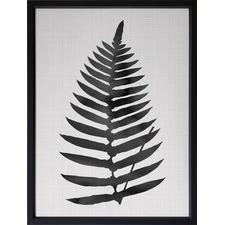 Black Beech Framed Print