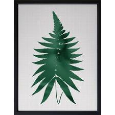 Green Fern Framed Print