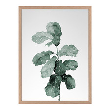 Phoenix Fiddle Leaf Framed Printed Wall Art