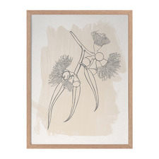 Botanic Study III Framed Printed Wall Art