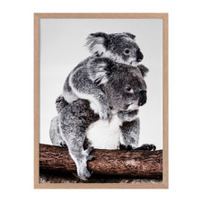 Mama Bear Framed Printed Wall Art