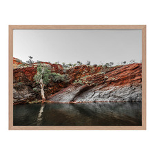 By The Billabong Framed Printed Wall Art