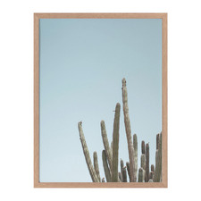 A Bit Spiky Framed Printed Wall Art