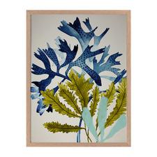 Marion Reef Framed Printed Wall Art