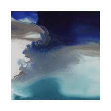 Aquatica II Canvas Wall Art
