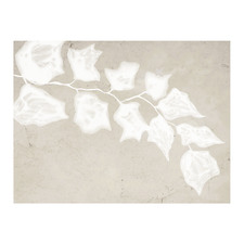 Paper Bark III Canvas Wall Art