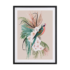 Parrot Oasis Framed Printed Wall Art