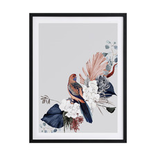 Blushing Rosella Framed Printed Wall Art