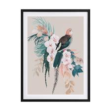 Jade Rosella Framed Printed Wall Art