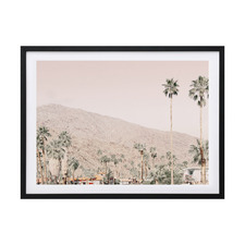 Palm Springs I Framed Printed Wall Art