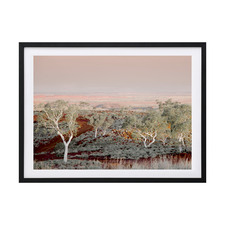 Pilbara Framed Printed Wall Art