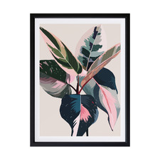 Pink Ficus Framed Printed Wall Art